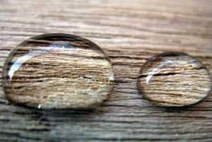 wood waret repellent